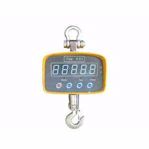 Picture of Crane Scale 0.5T