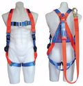 Picture of Forklift Safety Cage Harness suitable for EW-WP & EW-WPMS